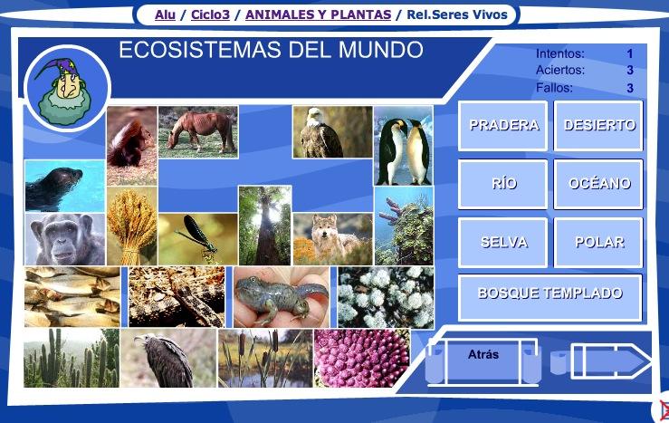 Los Ecosistemas Del Mundo Recurso Educativo 35741 Tiching